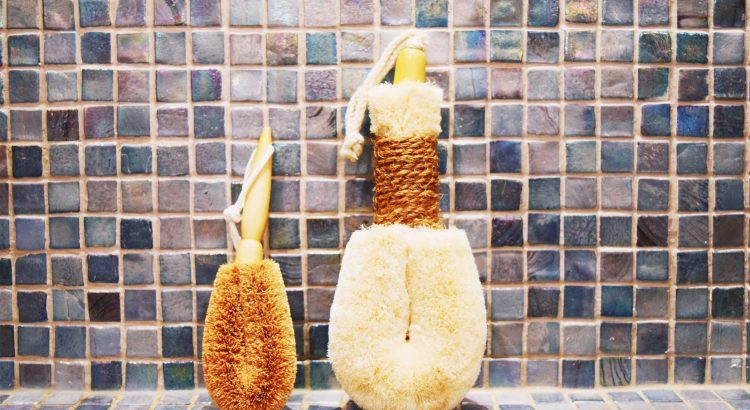 body scrub brushes