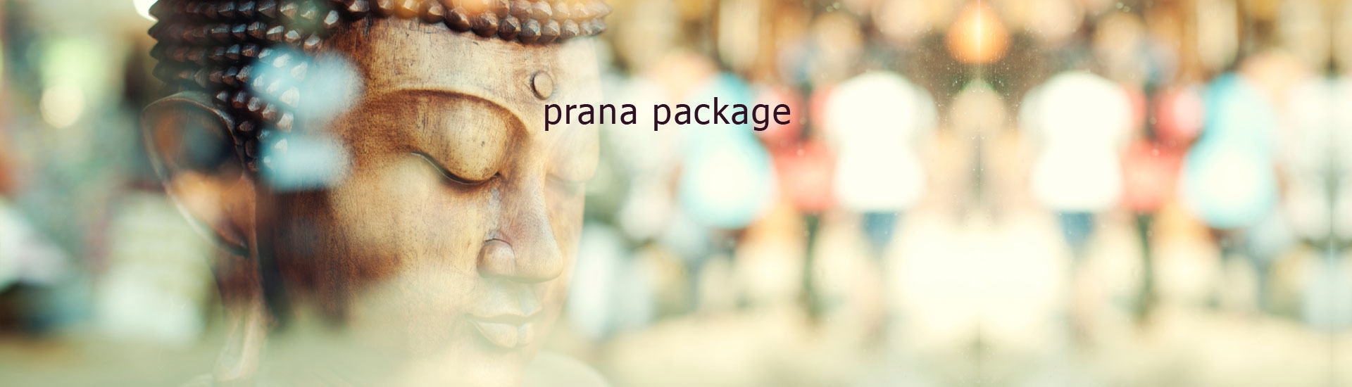 prana package